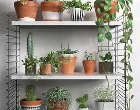 Shelves with Plants 3D