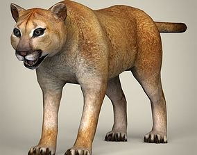 3D model Low Poly Realistic Mountain Lion
