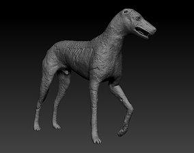 3D print model STALKER Game Blind dog