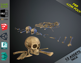 Skulls1 Old Bones 3D asset VR / AR ready