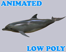 animated VR / AR ready Dolphin 3D Model