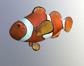 Clownfish High Detailed 3D model