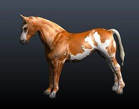 3D model horse stallion