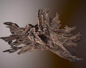 3D asset Driftwood