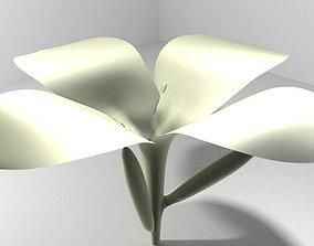 3D model Flower - Frangipani