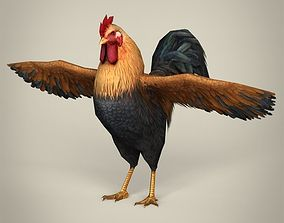 Game Ready Cock 3D asset