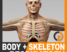 3D model Human Male Body Respiratory System and Skeleton -