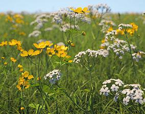 Wildflower Meadow 34-Piece Bundle 3D PBR