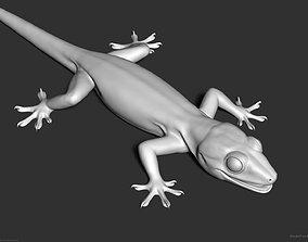 3D Tropical House Gecko Lizard - Highpoly Model