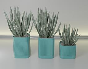 pot plant succulent 15 3D printable model