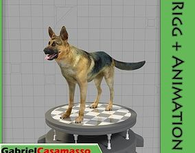 German Shepherd 3D asset animated