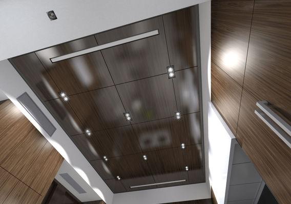 kitchen / ceiling