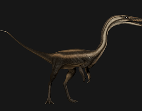 Coelophysis 3D model animated