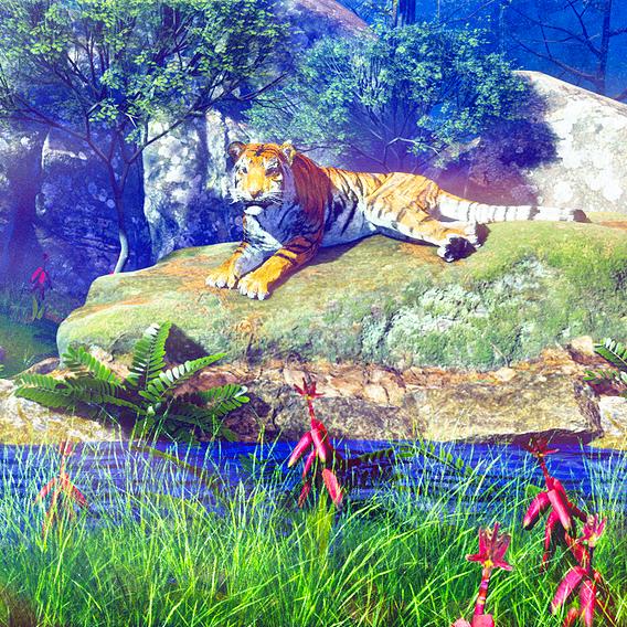 3d forest environment