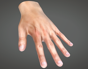 Human Hand 3D asset animated