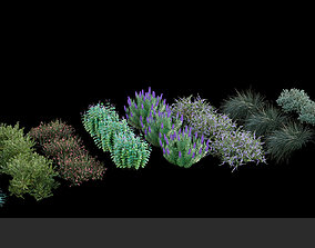 3D model Australian Bush and Grass kit 2