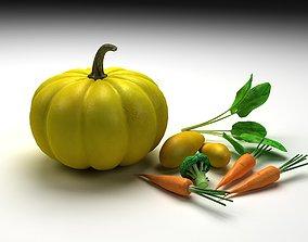 3D Pumpkins carrots Broccoli vegetables