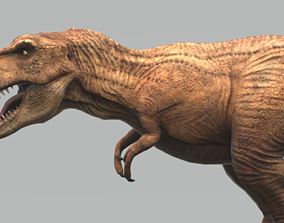 Tyrannosaurus with Animation 3D model
