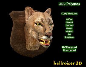 3D model Cougar Head - Textured