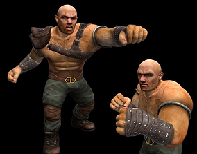3D asset animated Fighter