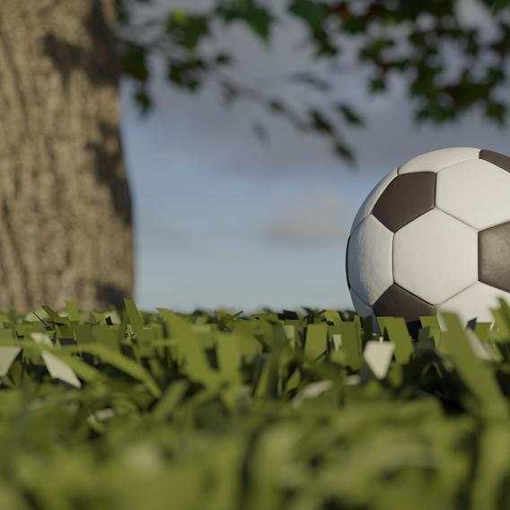 Football by a tree
