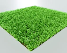 3D Grass eco