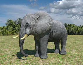 African Elephant 3D model animated low-poly