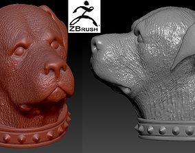 3D printable model Rottweiler head with collar