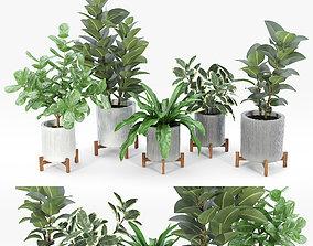 decor 3D Bungalow Planter Collection