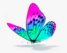 Butterfly rigged lowpoly 3D asset