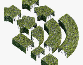 Hedge 600x400 3D model