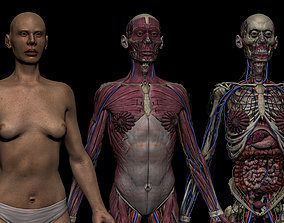 HD Female Complete Human 3D Anatomy Model realtime