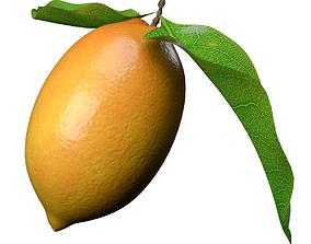 lemon fruit 3D model nature