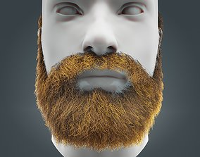 Beard RealTime 17 Version 2 Low Poly 3D asset