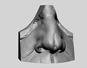 Male Nose 3D printable model