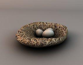 Nest with eggs 3D asset