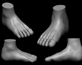 shape 3D Free Foot highpoly