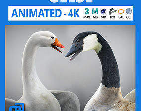 3D model Animated Geese