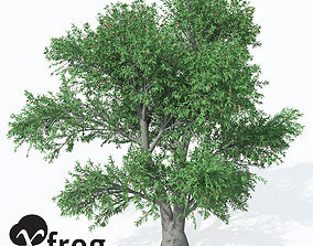 3D XfrogPlants Service Tree
