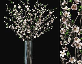 Plum blossom 02 3D model decor