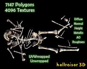 Dead Skeleton - Textured 3D asset VR / AR ready