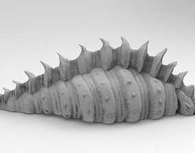 Sea Shell 3D printable model