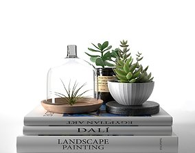 3D Books with Succulents and Air Plant pot