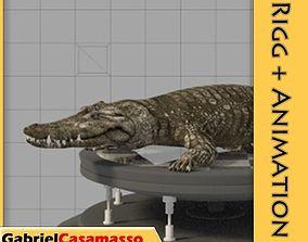 3D model animated Crocodile