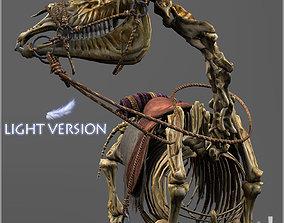 Skeletal Horse Light Version 3D asset