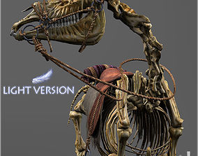 Skeletal Horse Light Version 3D asset