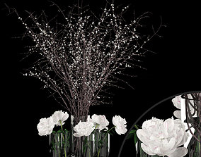 White prunus and peonies 3D model
