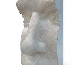 Nose of David - CGI model 3D