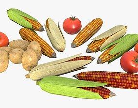 realtime Vegetables Assets 01