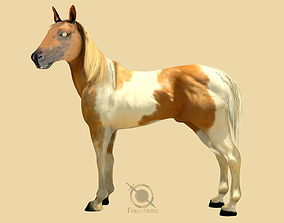 3D model rigged Horse rigg